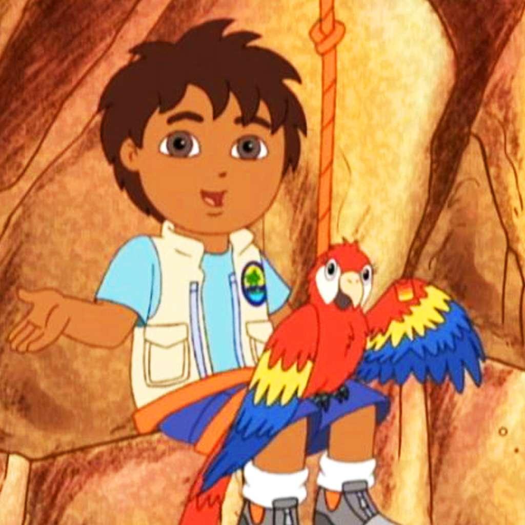 Go, Diego, Go: Bandage the Birdie