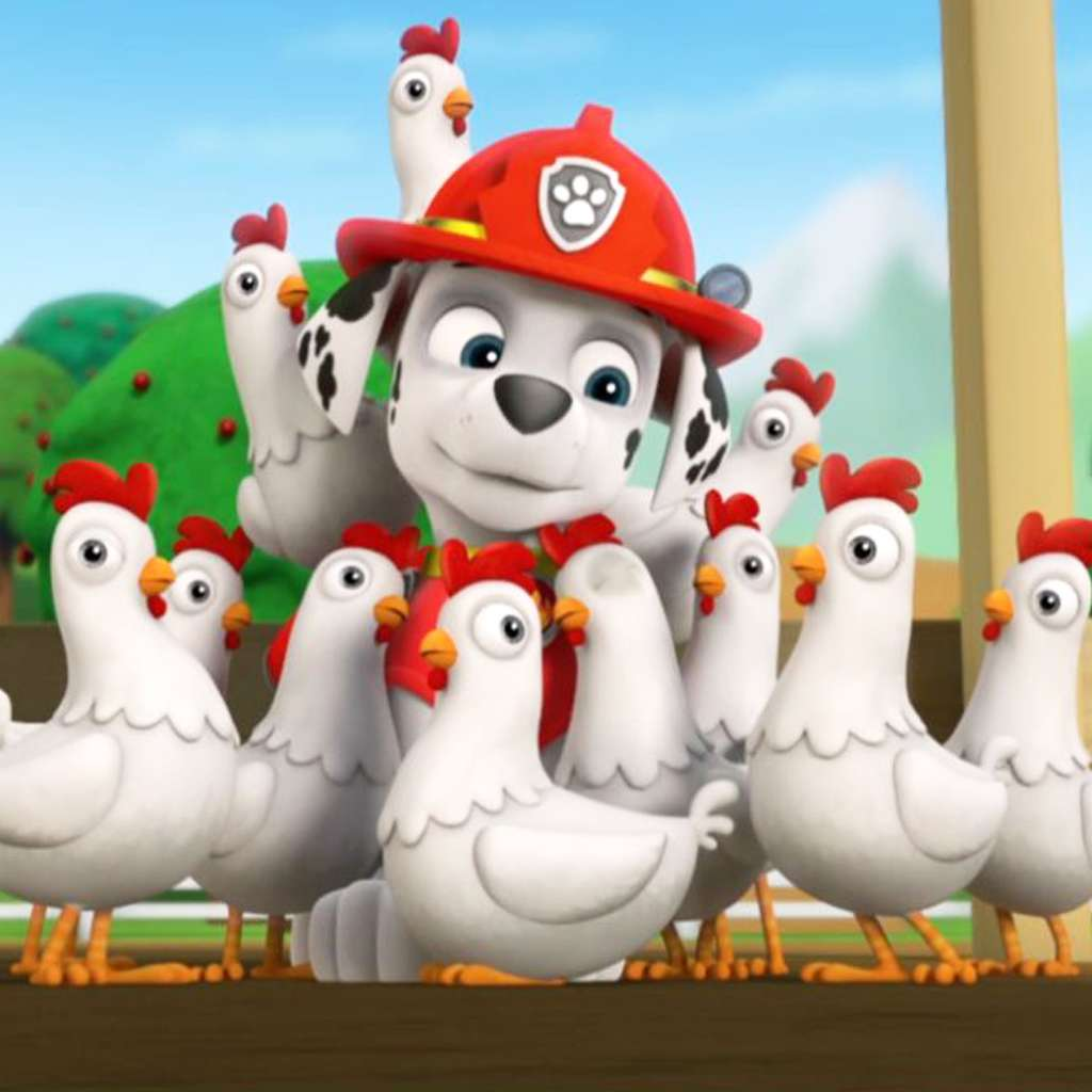 PAW Patrol: Chickaletta Flies the Coop